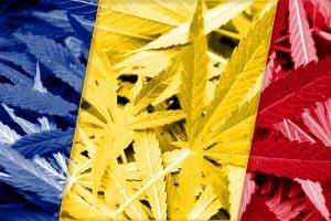 România pentru legalizarea cânepului medical