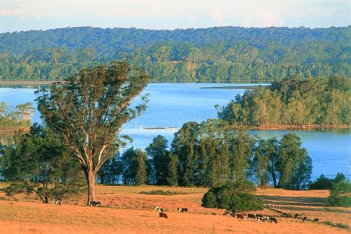 Breathtaking Coila Lake views