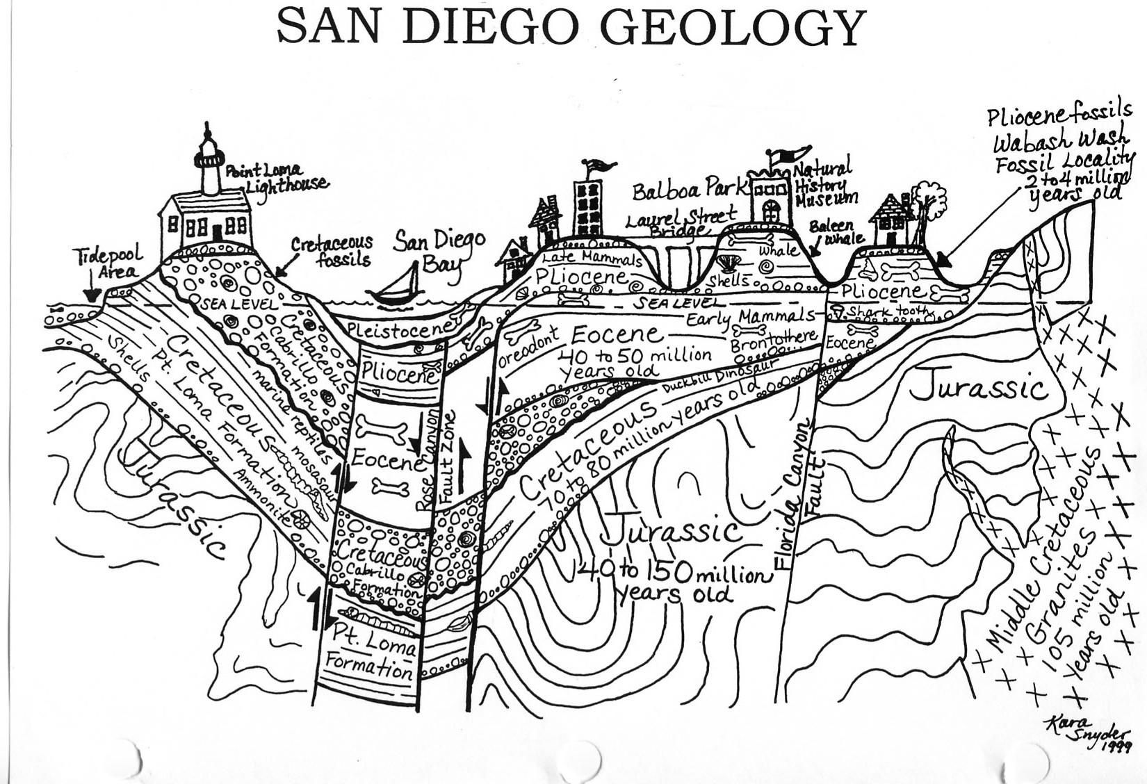 Cross Section of San Diego Geology