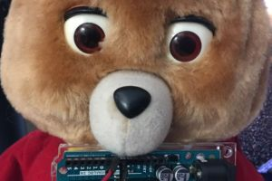 You can't unsee Tedlexa, the Internet of Things/AI bear of your nightmares