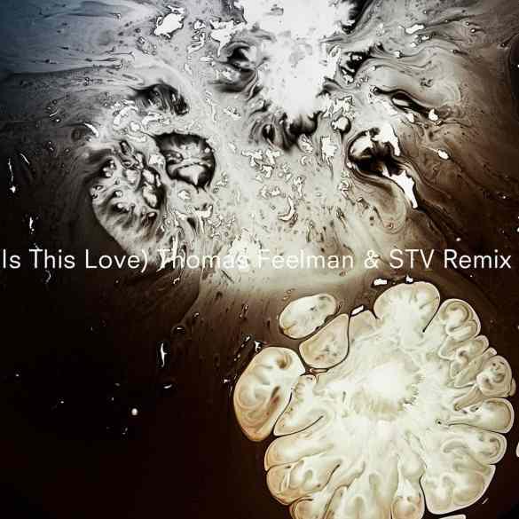 Thomas Feelman & STV remix