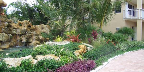 awesome tropical front yard