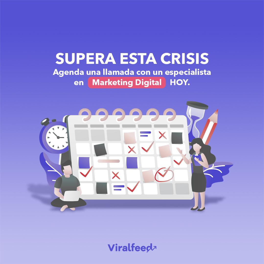 viralfeed-asesoria-1