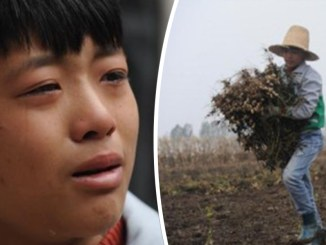 A boy from China named Gu Guang Zhao quit school to work and raise money for his mother. [Image Source: Asia One]