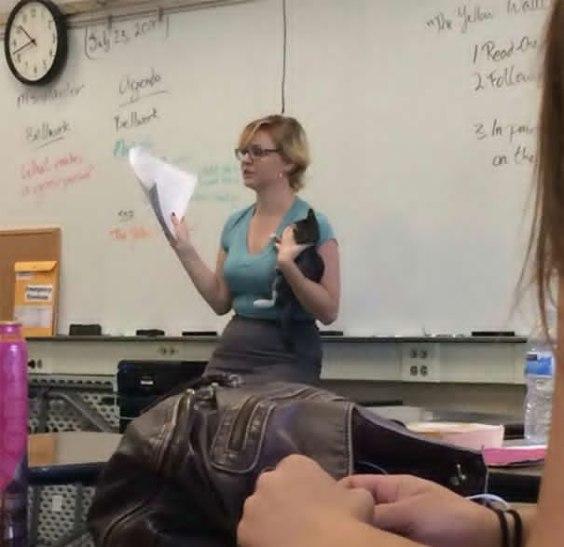 cool teachers 12