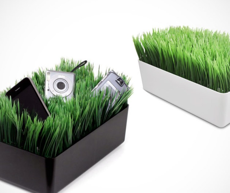 1. Grassy Lawn Charging Station