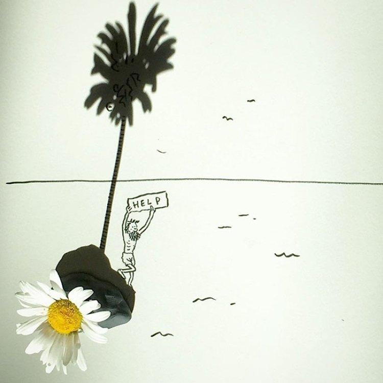 23-flowers-shadow