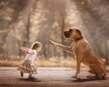32 Photos Of Little Kids And Their Big Dogs By Andy Seliverstoff