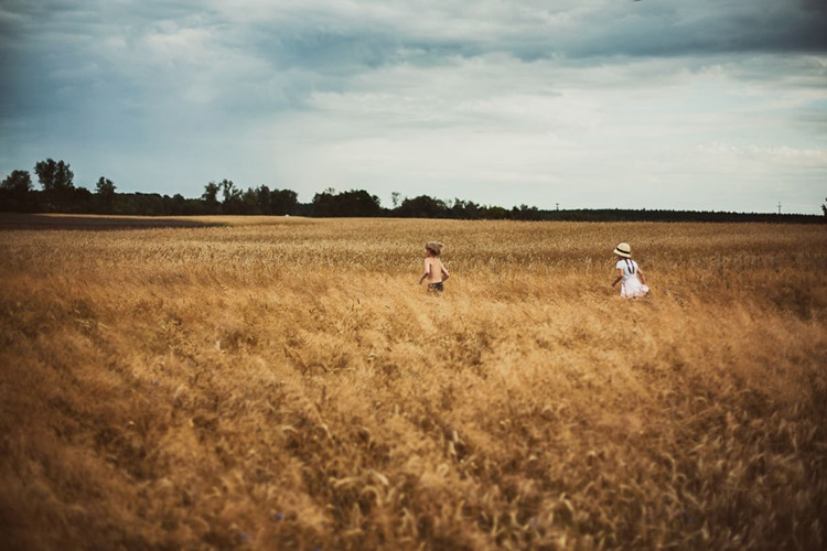 Photo of Kids Playing in the Field