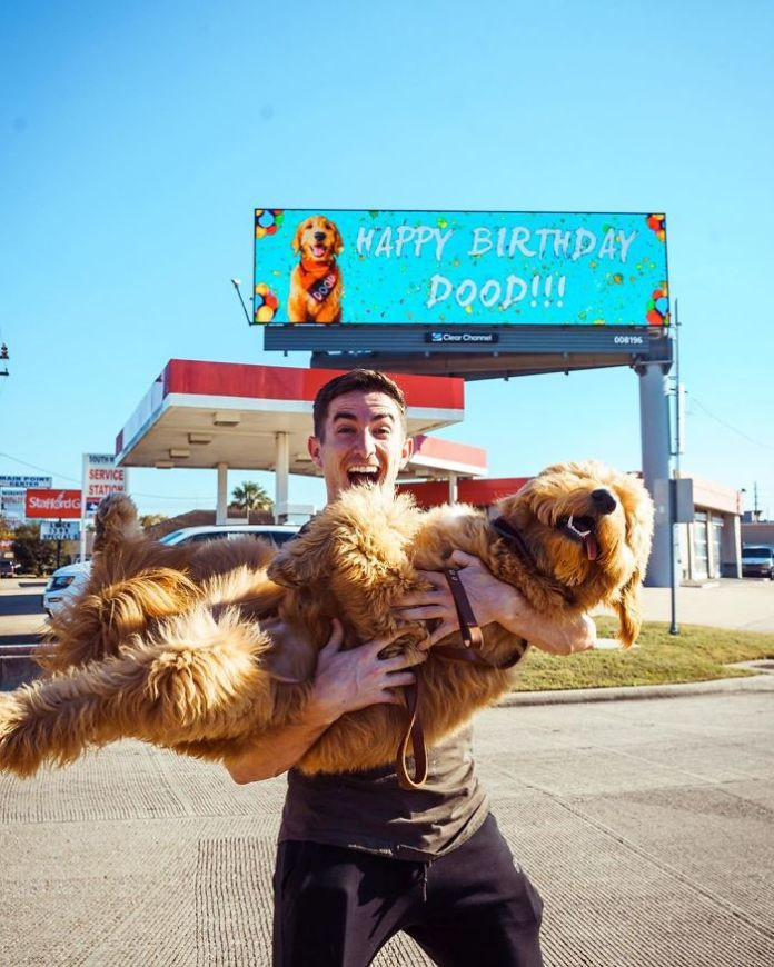 Man Rents A Whole Billboard To Let People Know It's His Dog's Birthday