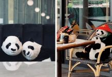 Restaurant Finds A Genius Way To Help Their Customers Feel Less Lonely While Social Distancing Using Pandas
