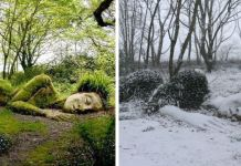 Incredible Living Sculpture In The Lost Gardens Of Heligan Changes Its Appearance With The Seasons by the artists called Pete and Sue Hill