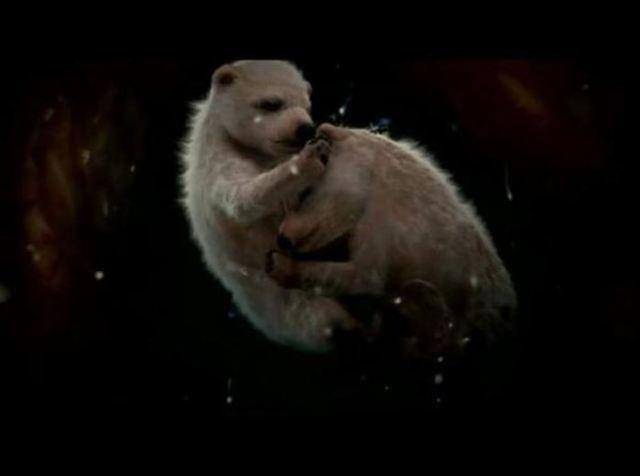 unborn-animals2