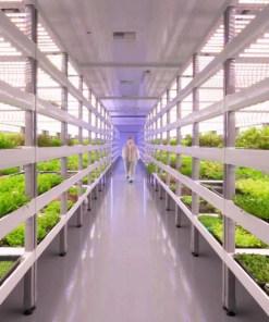 Vertical farming-Sananbio-Virex