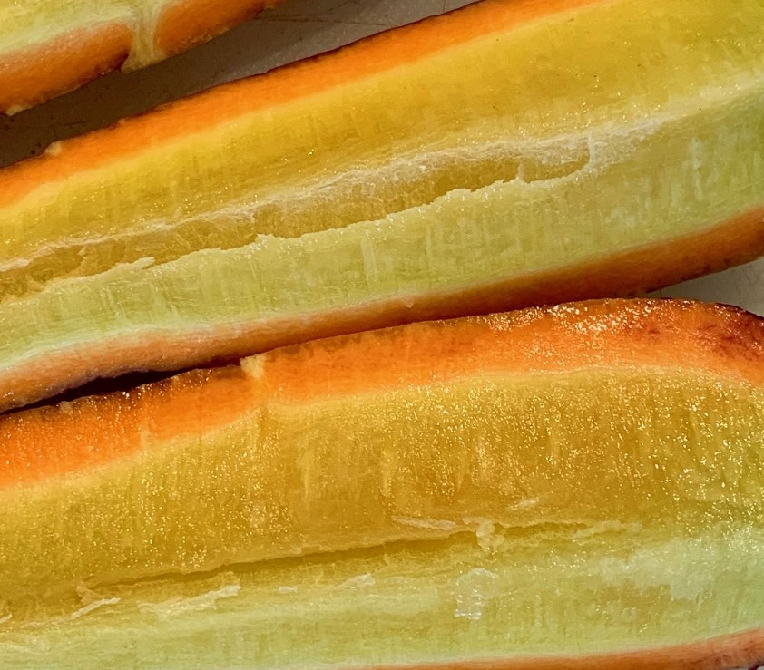 The varicolored inside of a carrot from my rainbow carrot crop.