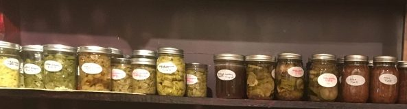 A shelf of pickled produce