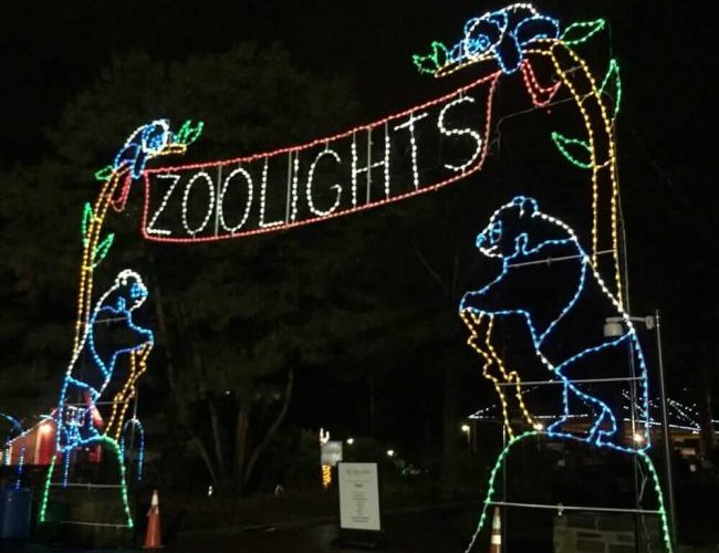 check out these christmas light displays in dc and virginia - Christmas Lights In Dc