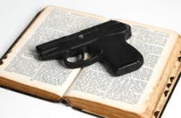 concealed firearms