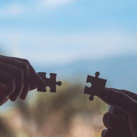 Terapia Sexual com Abordagem Holística - Virginia Gaia