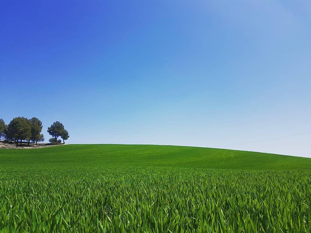 fotografía de campo de Castilla