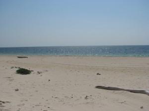 """""""OUR"""" BEACH"""