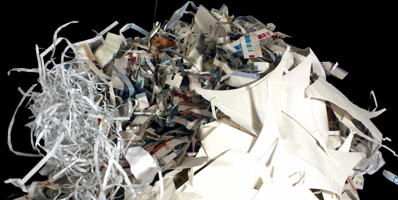 bleached paper scraps  VIRGINIA WOOD FLOWS