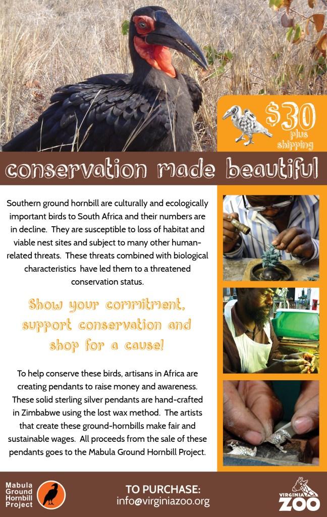VAZOO_Ground Hornbill Flyer (3)