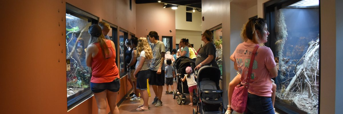 A group of people look into reptile exhibits