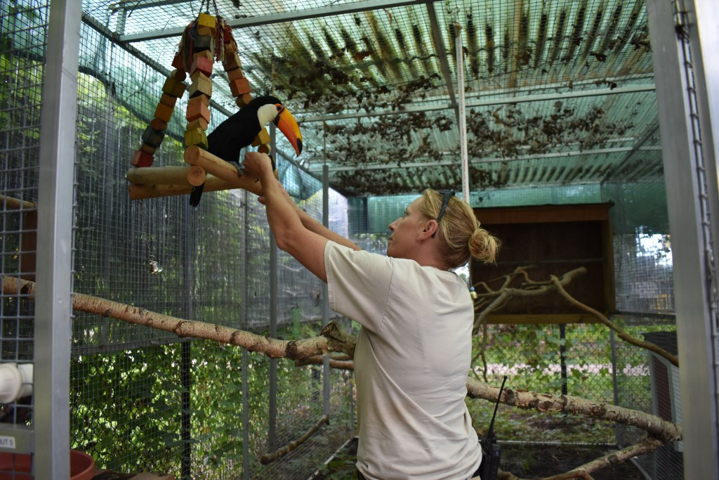 toucan interacting with Keeper