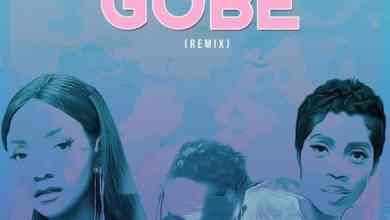 Photo of [Music] L.A.X ft Tiwa Savage, Simi – Gobe (Remix)