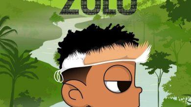 Photo of [Album] Nasty C ft. DJ Whoo Kid – Zulu EP