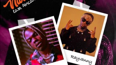 Photo of [Music] CKay ft. Rayvanny – Love Nwantiti (East African Remix)