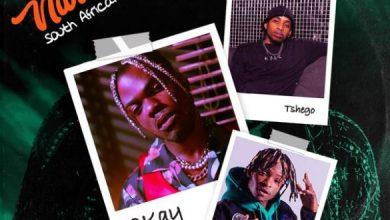 Photo of [Music] CKay ft. Gemini Major, Tshego – Love Nwantiti (South African Remix)