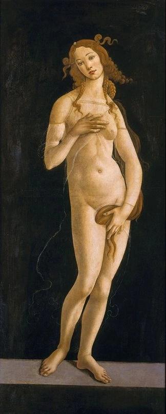 Sandro Botticelli e bottega, Venere pudica (1485-90 ca, olio su tavola trasferito su tela, Torino, Galleria Sabauda, photo credits: www.palazzodiamanti.it)