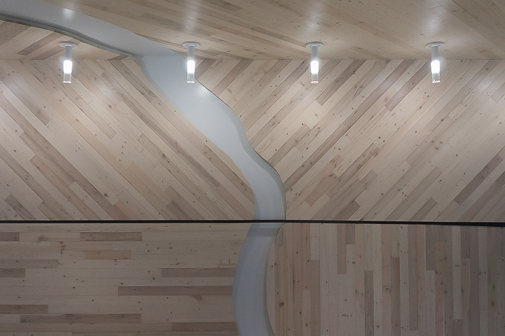 Northwind Paneling Collection  Viridian Reclaimed Wood