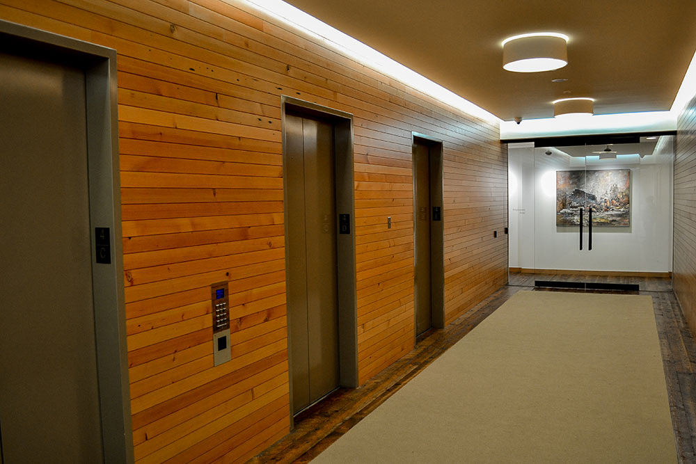 Old Growth Doug Fir Paneling Collection  Viridian