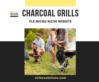 Niche Website For Sale In The Charcoal Grills Micro Niche