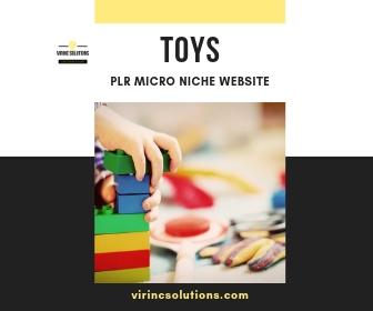PLR Niche Blog For Sale In The Toys Niche