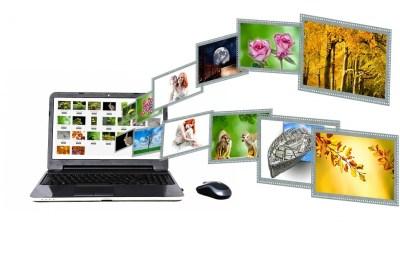 Website Content Elements