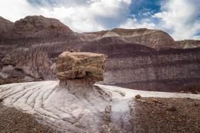 Petrified wood on a rock pedestal