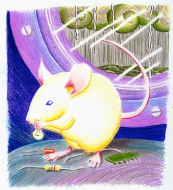 peep-the-mouse small