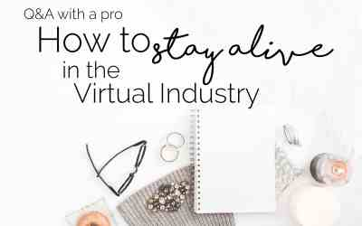 Q & A with a Pro: Part 3 – How to Stay Alive in the Virtual Industry