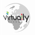 Silver Virtually Fluent globe
