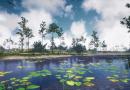 The Virtual UCF Arboretum Video