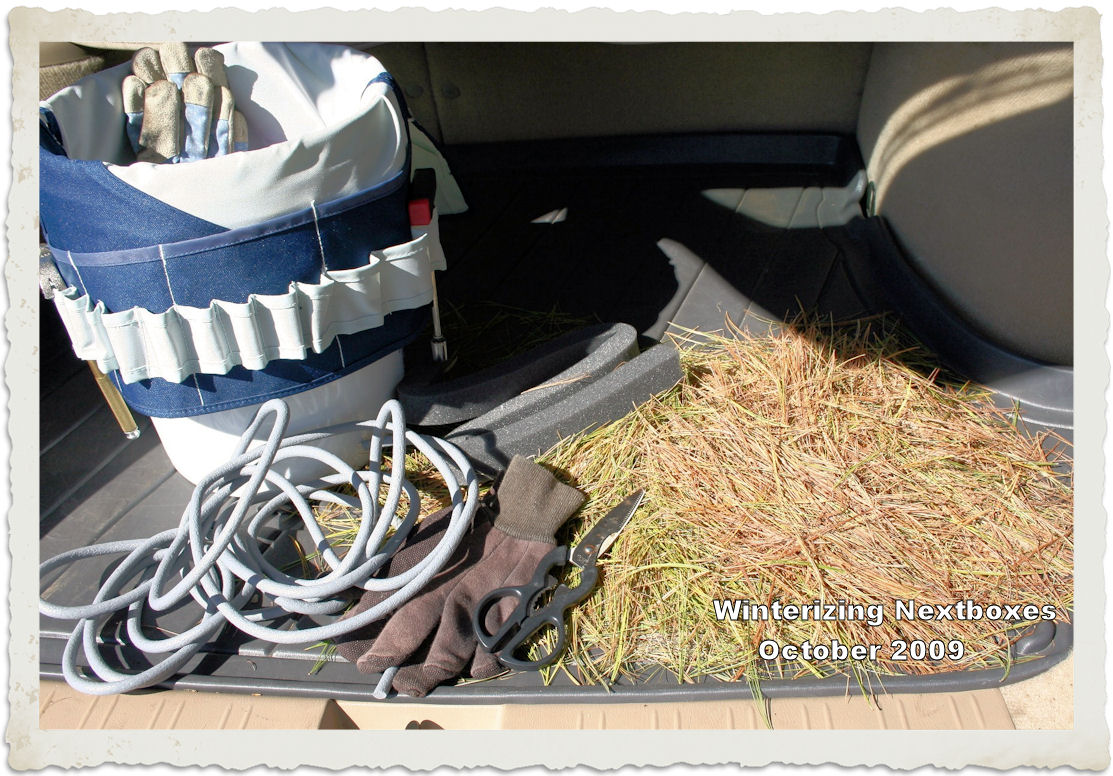Tack Box and Tools for Winterizing:  Foam-tubing weatherstripping, foam air-conditioning strips, old and newly fallen pine needles, gloves, and scissors.