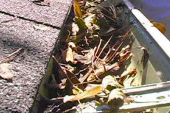 Your home and rain gutters