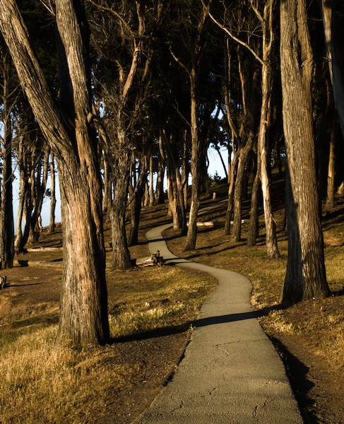 path at coyote point
