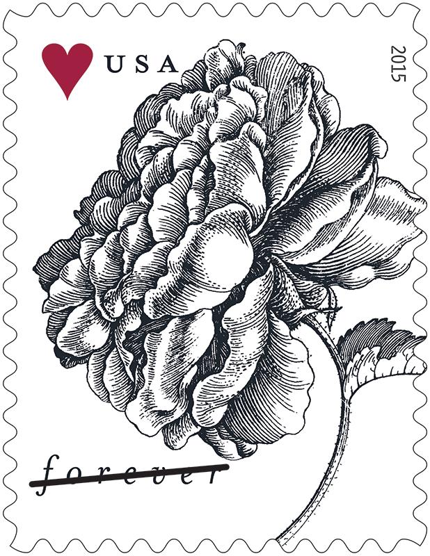 Vintage Rose & Tulip (Weddings) (U.S. 2015