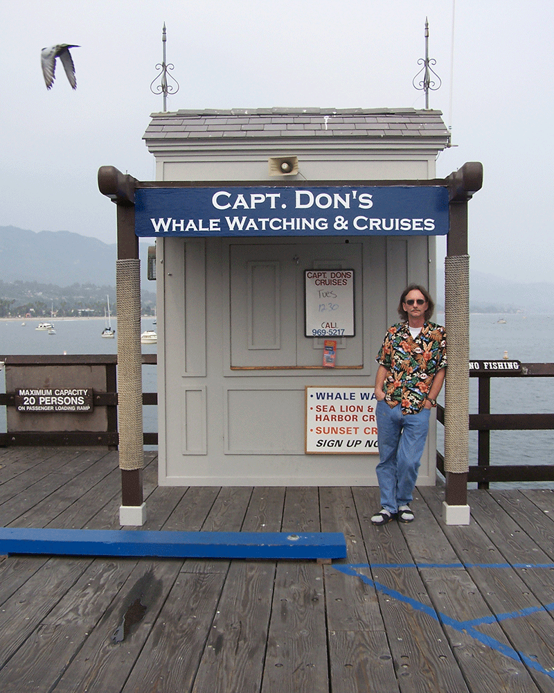 Capt Don\'s Whale Watching