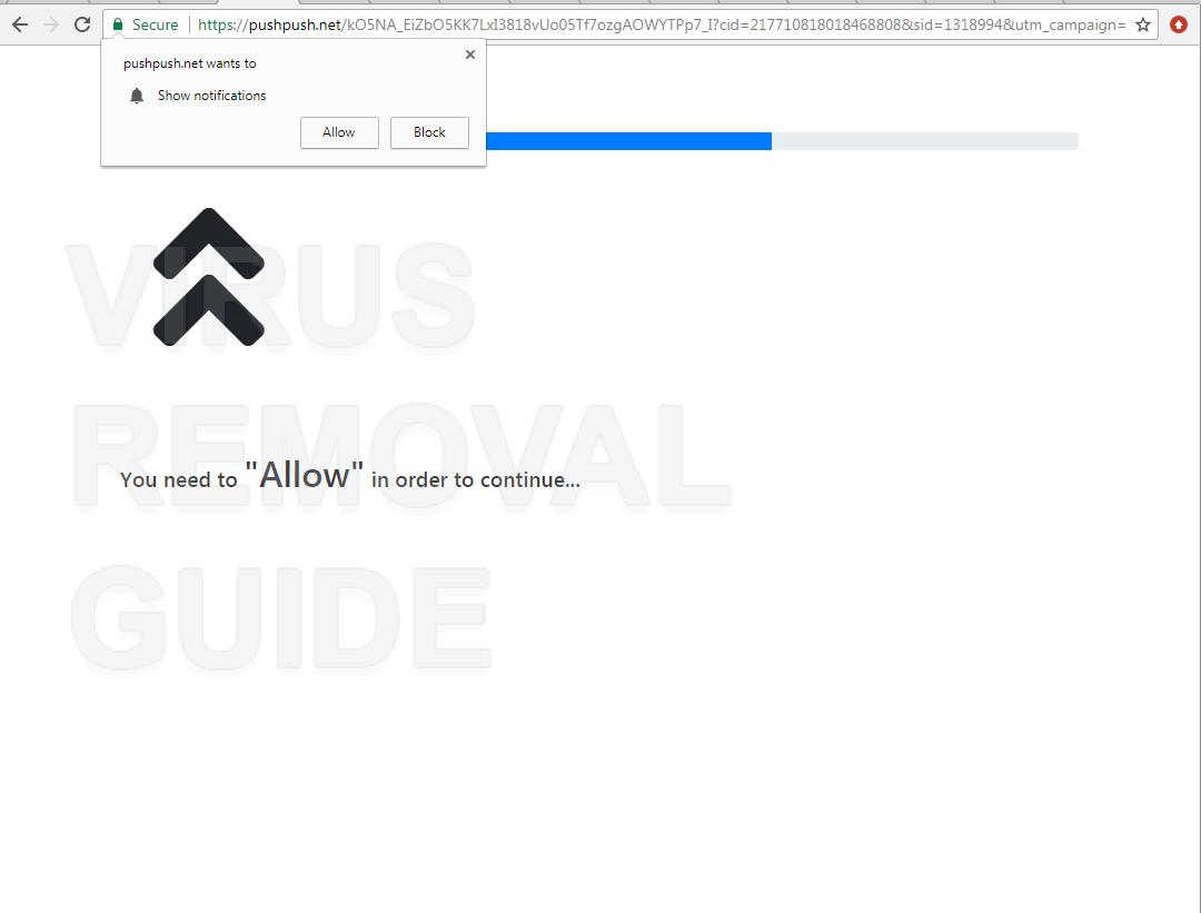 Pushpush.net